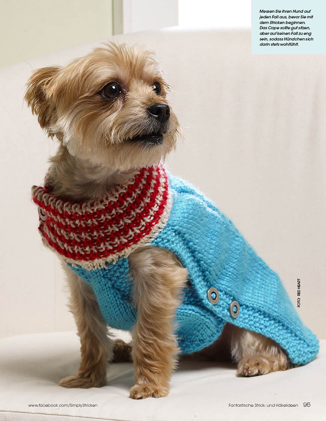 Free Knitting Pattern Dog Coat Jack Russell