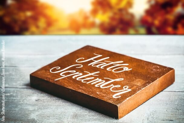 DIY-Idee Herbst Holz ©Alexeysun-shutterstock_380282935
