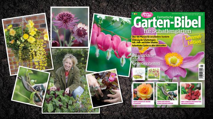 Fantastische Garten-Bibel fuer Schattengärten