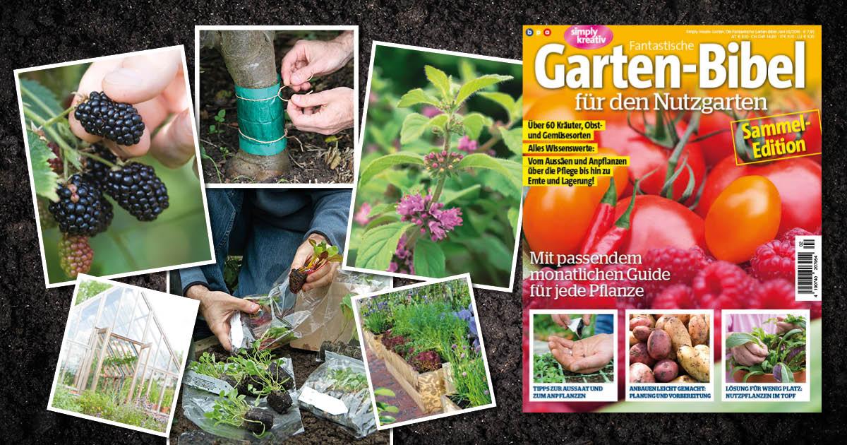 Fantastische Garten-Bibel für den Nutzgarten Heft 02/2016