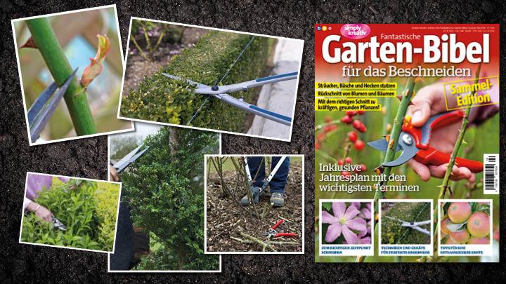 Fantastische Garten-Bibel 0416 Blog