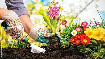 Gartenarbeit, Tag des Gartens