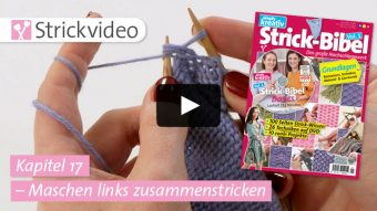 Strickvideo Kapitel 17 - Maschen links zusammenstricken - Strick-Bibel Vol.1