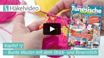 Häkelvideo: Bunte Muster mit dem Strick- und Reversstich - Kapitel 17 (Tunesische Häkel-Bibel Vol. 2)