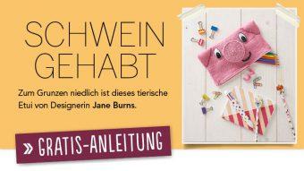 Newsletter Gratis Strickanleitung Schweinchen-Etui