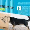 Der Schlüssel zur Kreativität - Galileo Magazin 02/2020