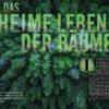 Das geheime Leben der Bäume - Galileo Magazin 02/2020