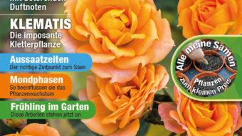 Garten-Tipps – 02/2020