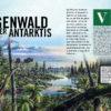 Ein Regenwald in der Antarktis - Galileo Magazin 04/2020
