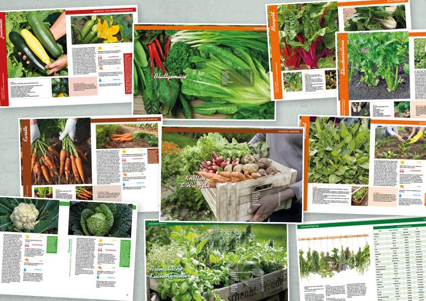Garten-Tipps Spezial: Mein Balkongarten – 01/2020