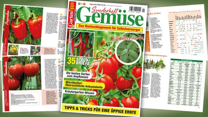 Garten-Tipps kompakt Sonderheft Gemüse – 01/2020