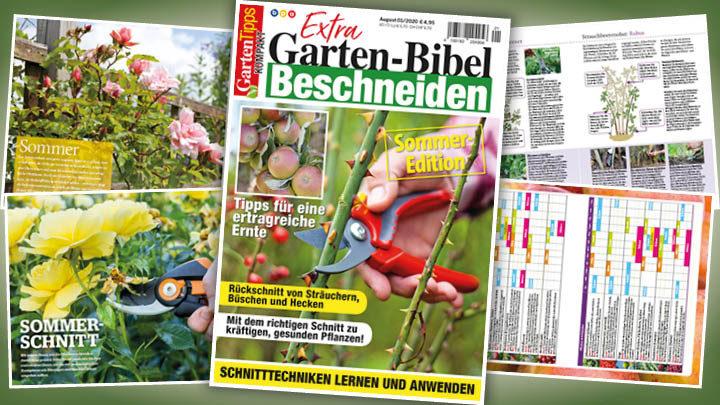 Garten-Tipps kompakt Extra: Beschneiden – 01/2020