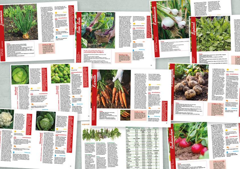 Garten-Tipps kompakt Balkon-Gemüse – 01/2020