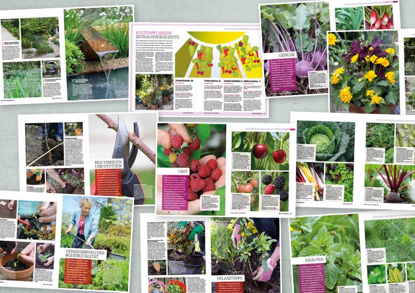 Garten-Tipps Sonderheft Mein Schatten-Garten – 03/2020